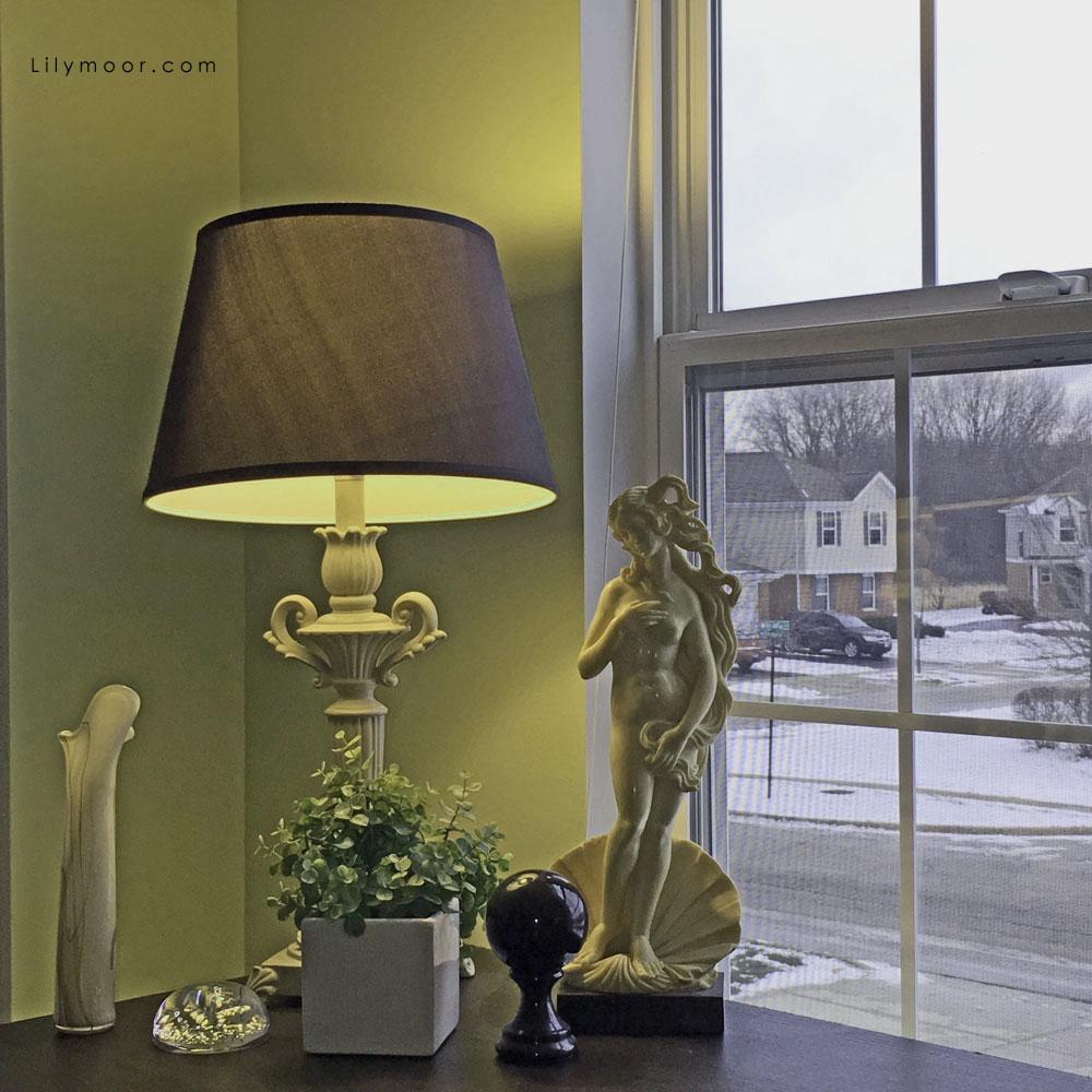 Venus at the window